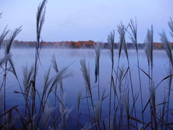 October morning view of Long Island from Fancy Free Island. Photo by Pamela Gough.
